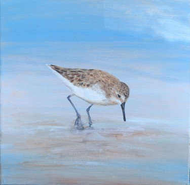 """Painting titled """"Young Sandpiper At…"""" by Laure Bury, Original Art, Oil Mounted on Stretcher frame"""
