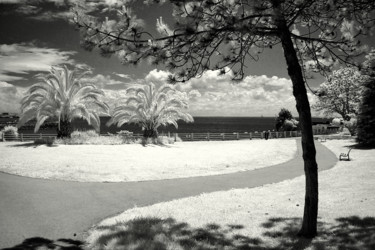 ©2008 by Infrared Art Photo
