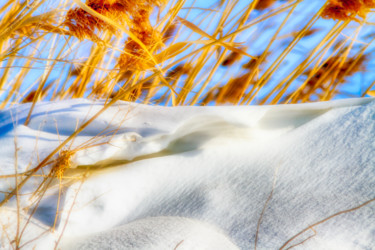 """Photography titled """"Winter in the Desert"""" by Marian Bogatu, Original Art, Manipulated Photography"""