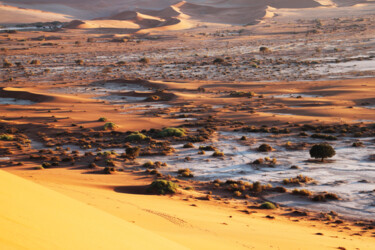 """Photography titled """"Sossusvlei Namibie"""" by Martine France Moreau, Original Art, Non Manipulated Photography"""