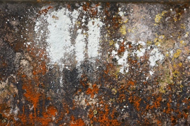 24x36 cm ©2018 by Michel VOLLE