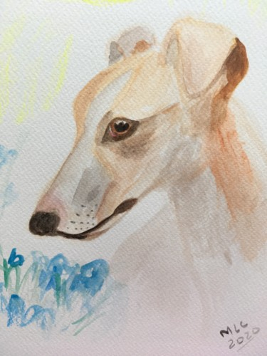 """Painting titled """"Whippet 1"""" by Murielle Lucie Clément, Original Art, Watercolor"""