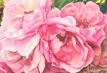 """Drawing titled """"ROSES ROSES"""" by Nives Palmić, Original Art, Pastel"""