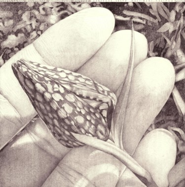 """Drawing titled """"ENDANGERED SPECIES"""" by Nives Palmić, Original Art, Graphite"""