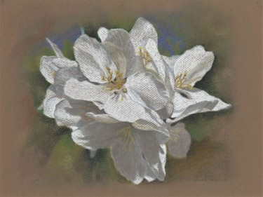 """Drawing titled """"SPRING BLOSSOMS"""" by Nives Palmić, Original Art, Pastel"""
