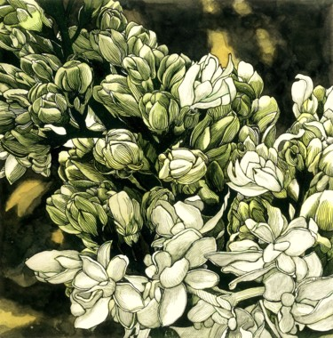 """Drawing titled """"WHITE LILAC"""" by Nives Palmić, Original Art, Ink"""
