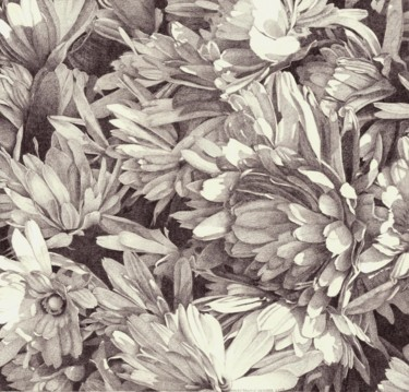 """Drawing titled """"BLOSSOM II"""" by Nives Palmić, Original Art, Graphite"""