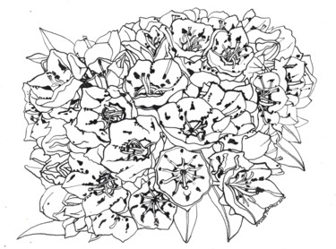 """Drawing titled """"MOUNTAIN LAUREL Flo…"""" by Nives Palmić, Original Art, Ink"""