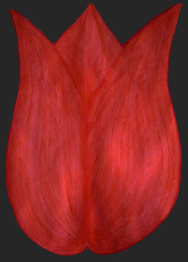 """Painting titled """"tulip1200.png"""" by Norachai, Original Art,"""