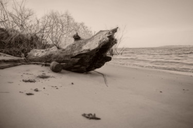 """Photography titled """"Shore"""" by Pavel Olhovski, Original Art, Non Manipulated Photography"""