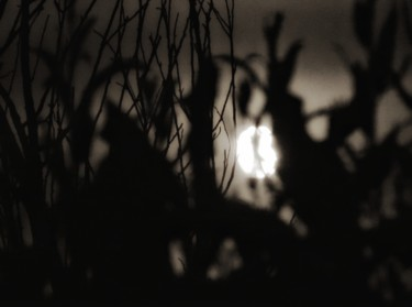 """Photography titled """"moonlight high"""" by Ravid Wolff, Original Art, Digital Photography"""