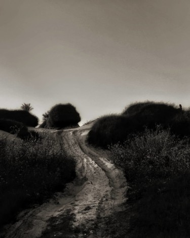 """Photography titled """"the path not taken"""" by Ravid Wolff, Original Art, Digital Photography"""