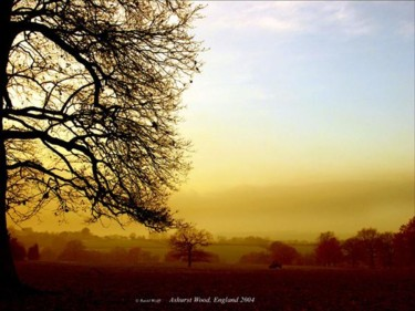 """Photography titled """"England"""" by Ravid Wolff, Original Art,"""