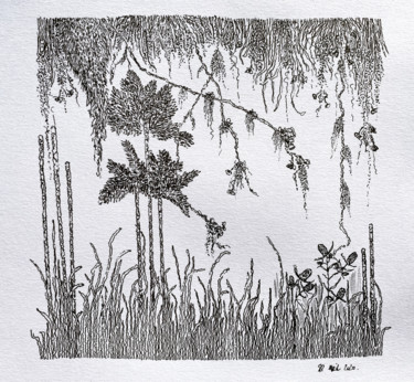 """Drawing titled """"Forêt tropicale"""" by Romain Pilato, Original Art, Ink"""