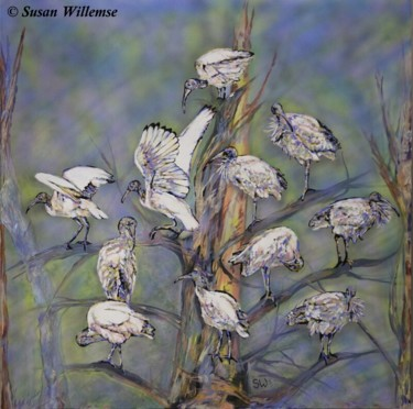 """Painting titled """"Ibis"""" by Susan Willemse, Original Art, Acrylic Mounted on Stretcher frame"""