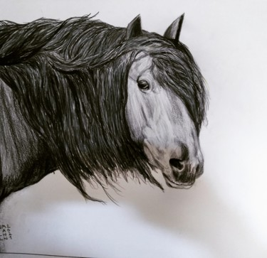 """Drawing titled """"cheval 3"""" by Claude Willmann, Original Art, Pastel"""
