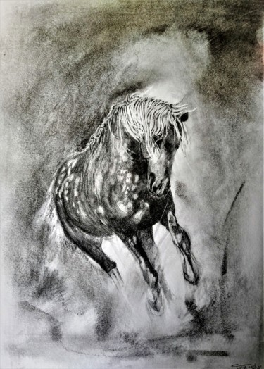 Horse Drawing, graphite, figurative, artwork by Benny Smet