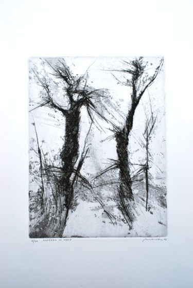 11.8x8.7 in © by Special Offers