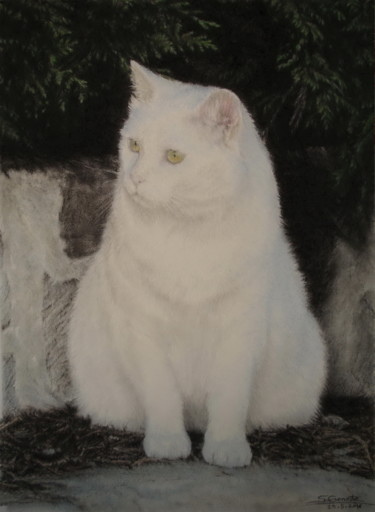 Cat Painting, pastel, hyperrealism, artwork by Sylvie Geneste