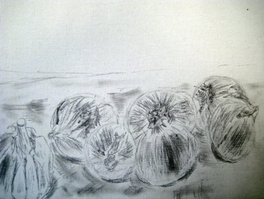 """Drawing titled """"onions"""" by Tom Schrijver, Original Art, Pencil"""