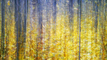 """Photography titled """"Mood Color - Autumn…"""" by Alexander Tarasenkov, Original Art, Manipulated Photography"""