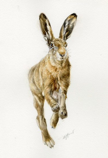 """Painting titled """"Running hare"""" by Una Hurst, Original Art, Watercolor Mounted on Cardboard"""