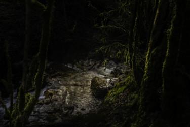 Nature Photography, digital photography, land art, artwork by Vincent Frediani