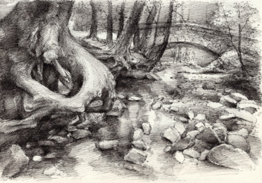 """Drawing titled """"Roots and silent fo…"""" by Adriana Mueller, Original Art, Ink"""