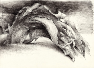 """Drawing titled """"Wood, formed by nat…"""" by Adriana Mueller, Original Art, Ink"""