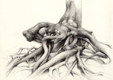 """Drawing titled """"Graceful root in th…"""" by Adriana Mueller, Original Art, Ink"""