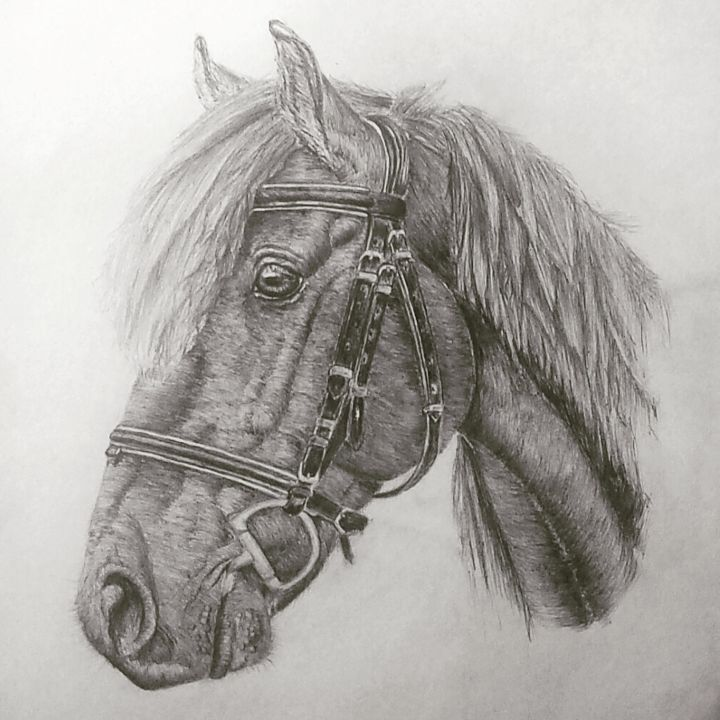 """Drawing titled """"img-20170531-105347…"""" by Abbie Wigg, Original Art, Graphite"""