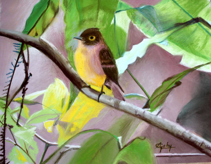 Un tufled flycatcher - Painting,  11.8x15.8 in, ©2020 by Adyne Gohy -                                                                                                                                                                                                                      Figurative, figurative-594, Nature, Ships