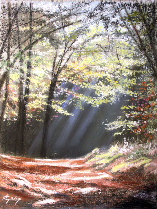 Promenade en forêt - Painting,  15.8x11.8x0.4 in, ©2020 by Adyne Gohy -                                                                                                                                                                          Figurative, figurative-594, Nature