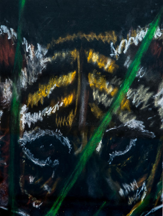 tiger - Drawing ©2014 by Terri -                            Colors, tiger