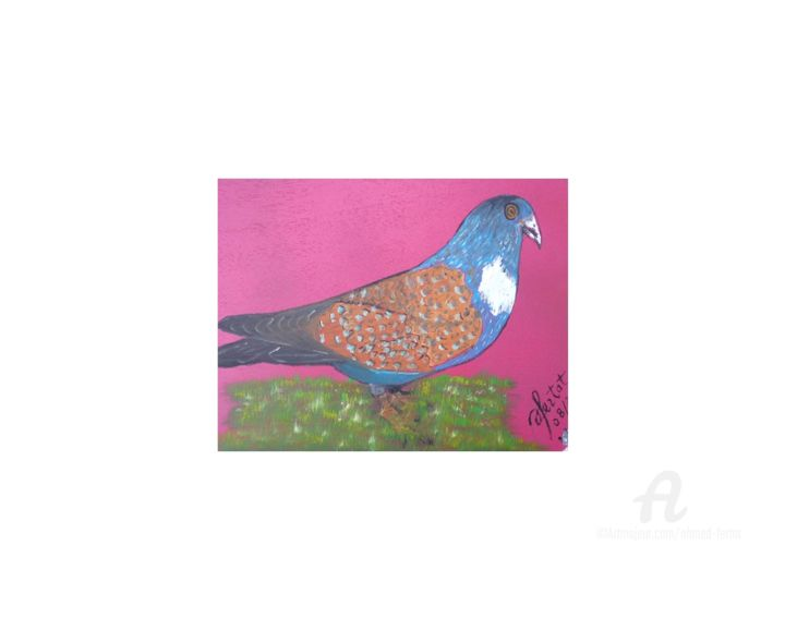 pigeon-4.jpg - Painting,  9.5x12.6 in ©2018 by Ahmed FERTAT -                                            Naive Art, Animals, oiseaux