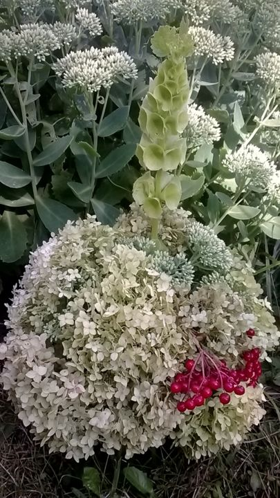 Bouquet of hydrangea ,molucella and viburnum on a - © 2018  Online Artworks