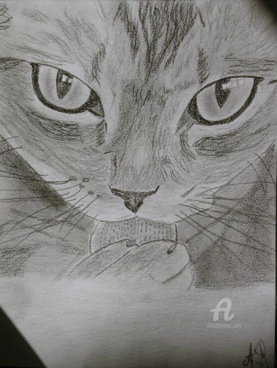 Mr Le Chat - Drawing,  11.4x8.3 in, ©2015 by Alexis Raoult -                                                                                                                                                                                                      Animals, Chat, Alexis Raoult, NBcover