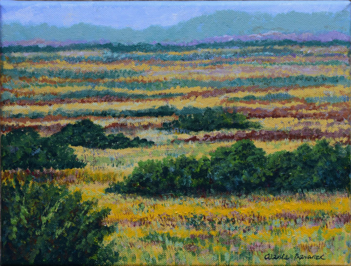 Paynes Prairie Gold - Painting,  9x12x0.75 in ©2010 by Alexis Baranek -                                                                        Realism, Canvas, Landscape, Nature, prairie, gold, green, park, ecological, Florida