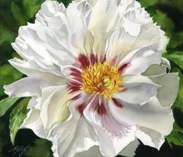 White Peony Painting By Alfred Ng Artmajeur