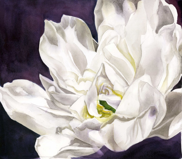 """Painting titled """"French white tulip…"""" by Alfred Ng, Original Art, Watercolor"""