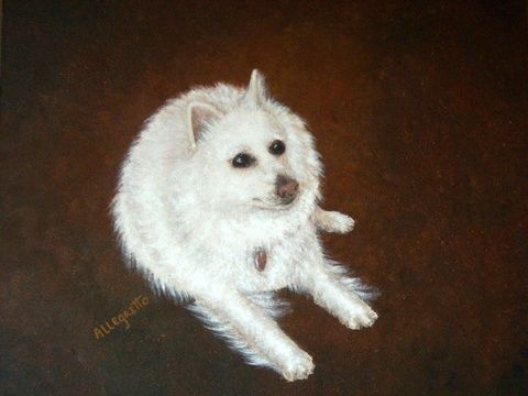 Pooh Bear - Painting,  11x14 in, ©2010 by Allegretto -                                                                                                                                                          Dogs, Painting of Pooh Bear, Chris' little white fluff ball dog. dog portrait