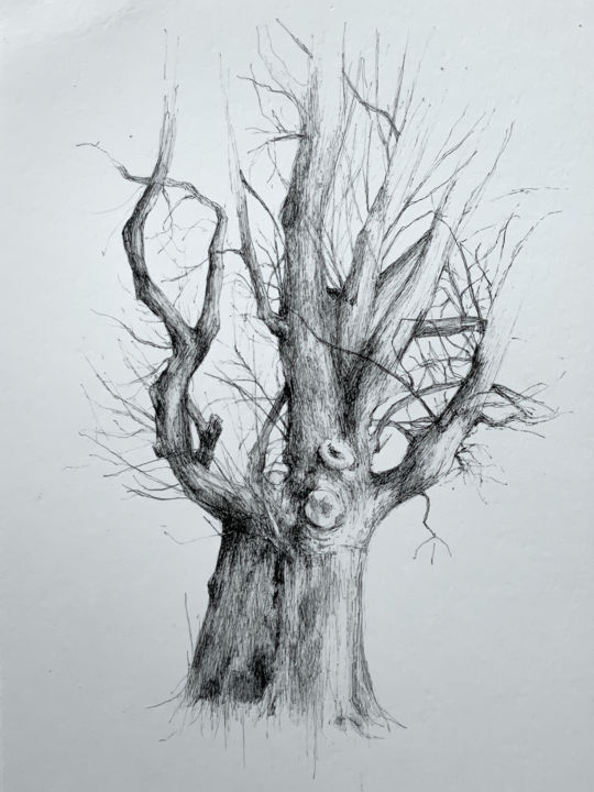 Arborescence #2 - Drawing,  11.7x8.3 in, ©2019 by Amélie Helmstetter -                                                                                                                                                                                                                                                                                                                                                                                                                                                                                                                                                                                                                                      Illustration, illustration-600, Nature, tree, arbre, art, drawing, draw, illustration, pen and ink, black work, contempory art, artwork