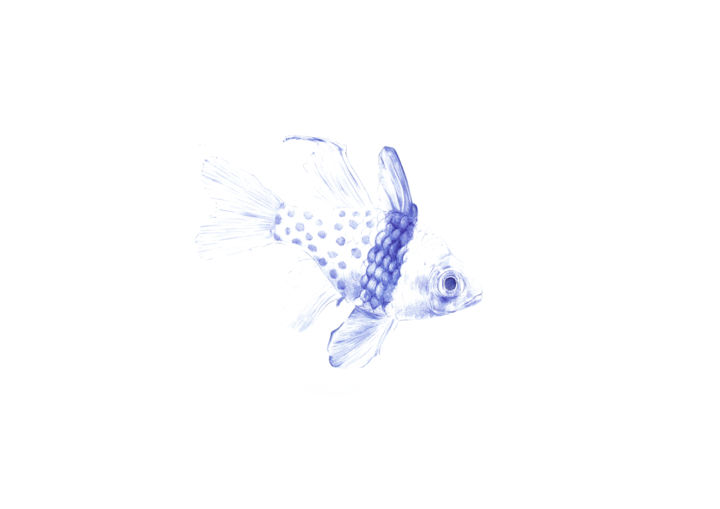 Dots - Drawing,  8.3x11.7 in, ©2020 by Amélie Helmstetter -                                                                                                                                                                                                                                                                                                                                                                                                                                                                                                                                                                                                                                                                                                                                                                                                                                                                                                                                                                                                                                                                                              Figurative, figurative-594, Animals, Fish, Portraits, poisson, fish, illustration, dessin, drawing, artwork, draw, pen, ink, encre, bleu, blue, ocean, sea, mer, nature, animal, animaux