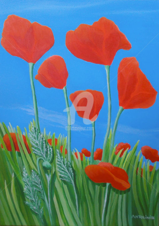 Giant Poppies - ©  poppies, flowers, field, sun, summer, red, summer flowers, green Online Artworks