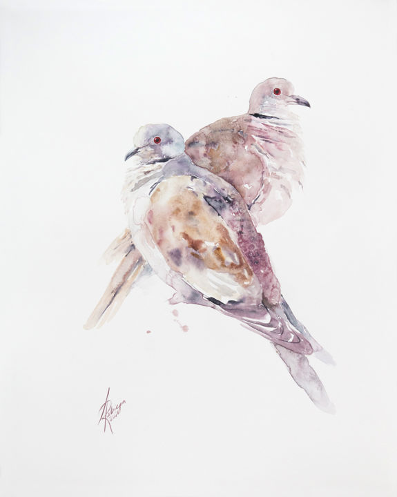 """Painting titled """"Collared Dove"""" by Andrzej Rabiega, Original Art, Watercolor"""