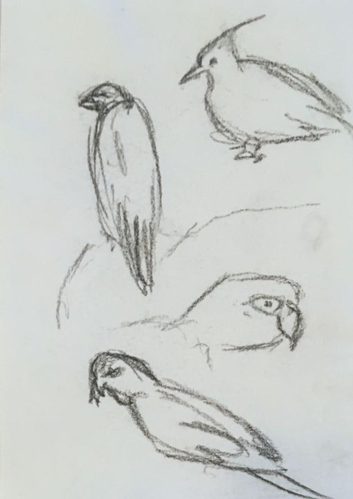 """Drawing titled """"Birds 1"""" by Angela, Original Art, Charcoal"""