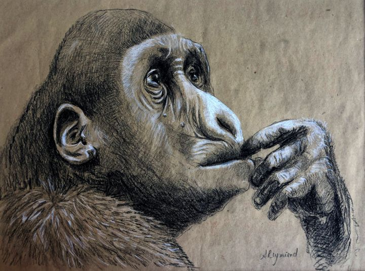 """Drawing titled """"Série Ah, L'Homme..…"""" by Anne Reymond, Original Art, Graphite Mounted on Cardboard"""
