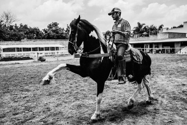 MEXIQUE 3 - Photography,  11.8x17.7x0.8 in ©2018 by Maume Gallery -                                                        Art Deco, Animals, Horses, cheval, mexique, charros, dressage, déco