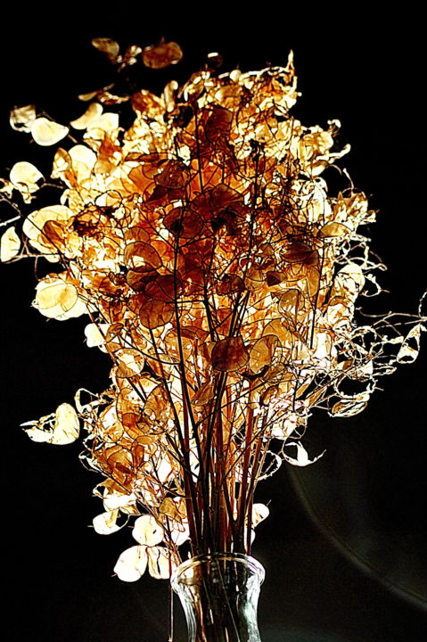 bouquet de lumiere - Photographie,  15,8x11,8 in, ©2019 par aquartistiq -