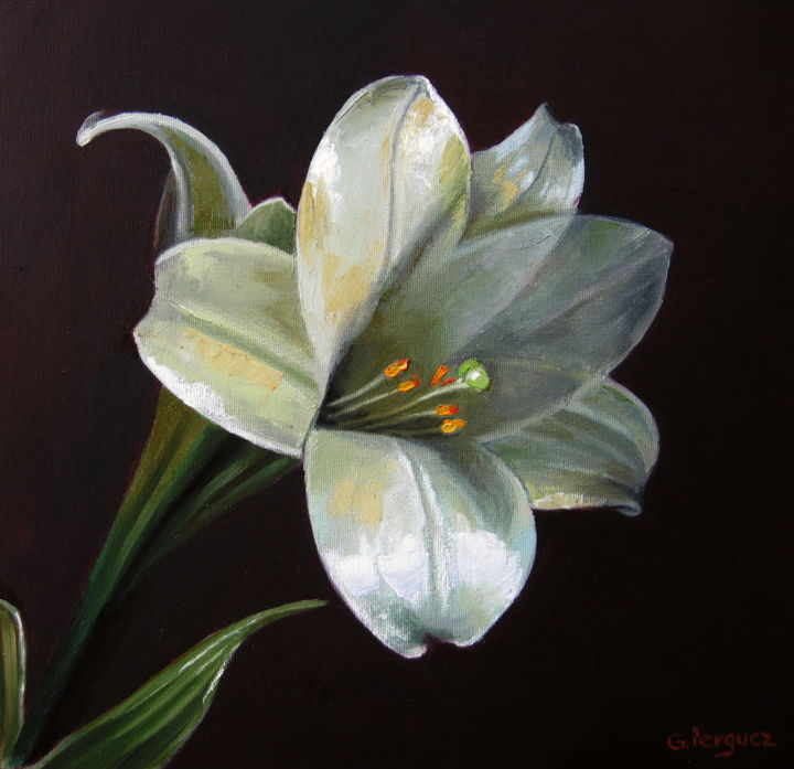 Lily Flower Photo Color Painting Beautiful Artmajeur Gheorghe